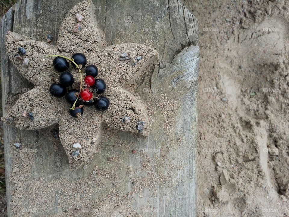 Elevated view of currants on sand
