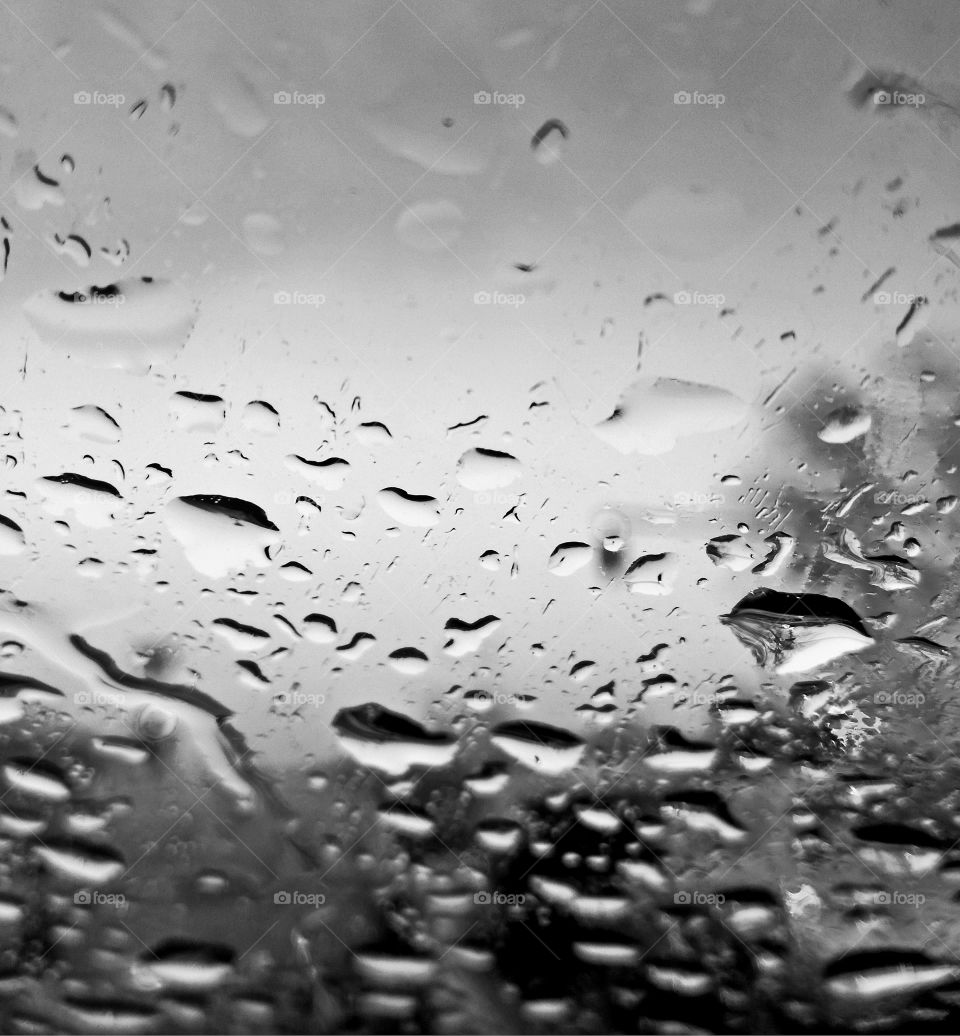 perfect rain drops on the glass of the car. black and white
