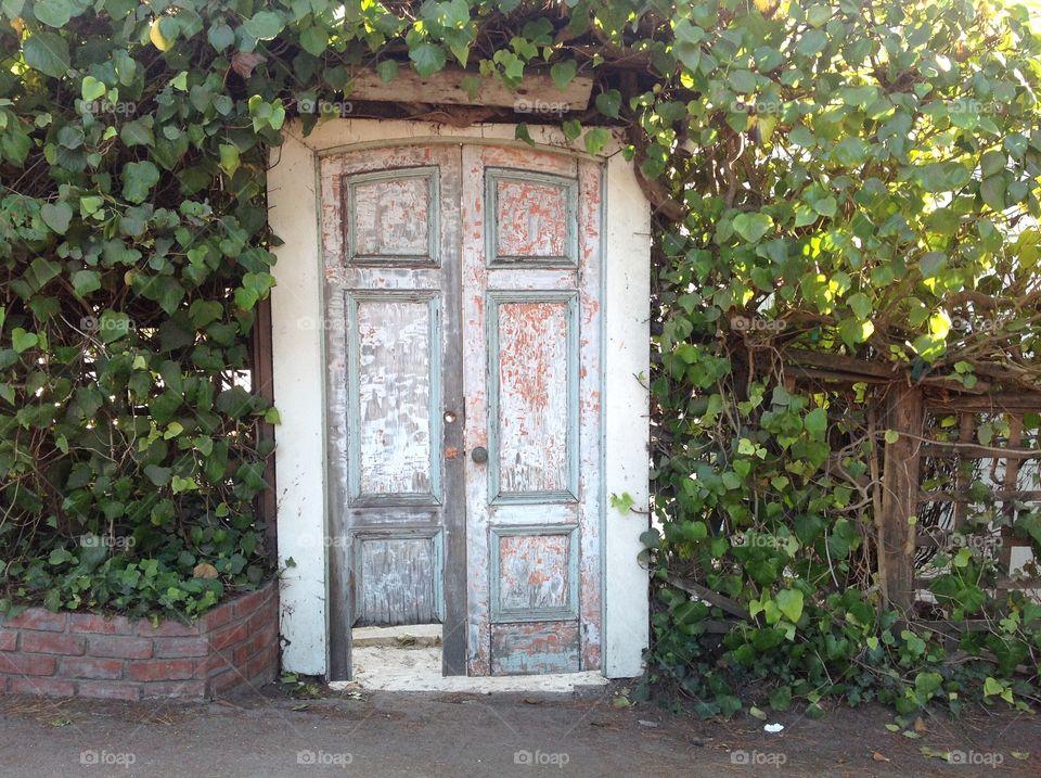 Door old gate