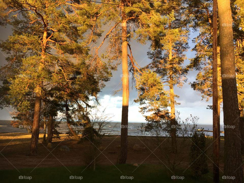 Magical Sunset tonight Kalmarsund, Sweden