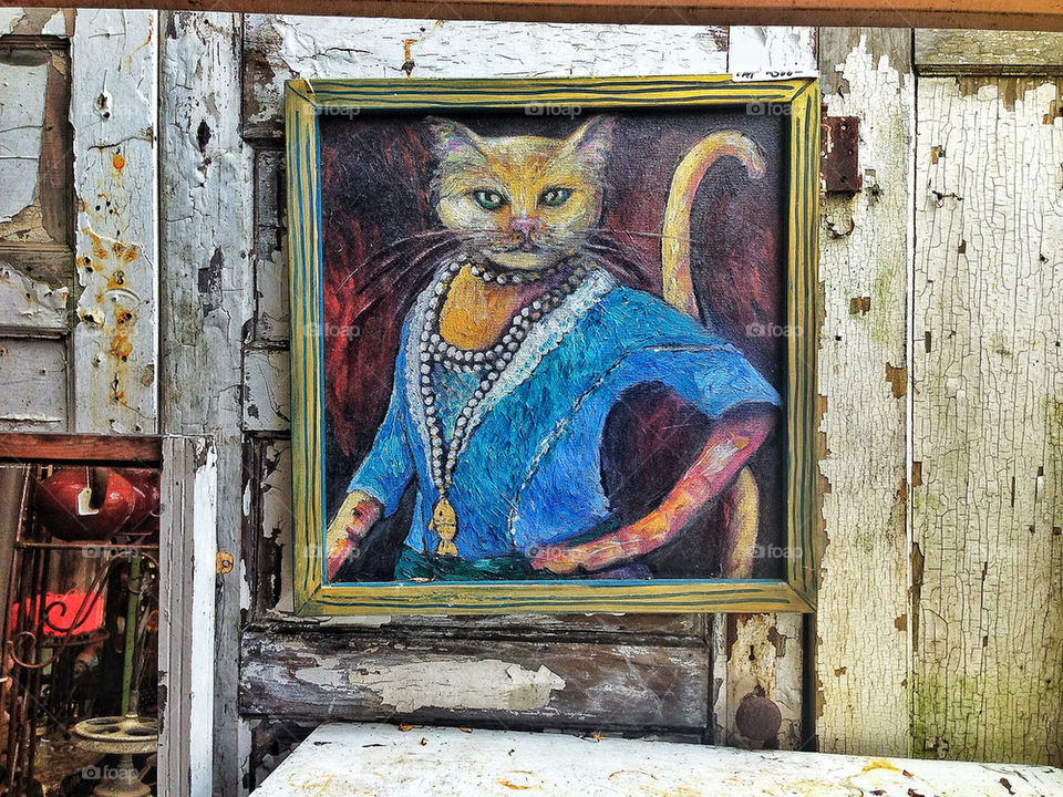 Outsider art portrait of cat against a peeling wood wall in an antique