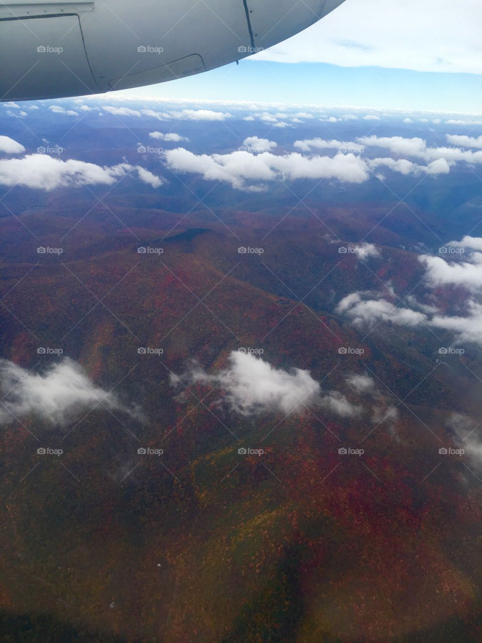 A final shot of the wonderful view of the foliage in Upstate NY from above.