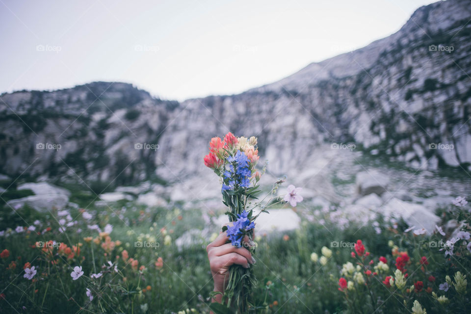 Wild flowers for wild hearts