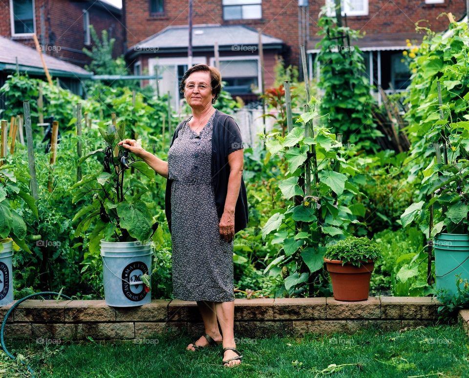 Grandma's Garden. Proud grandmother with her urban organic veg garden