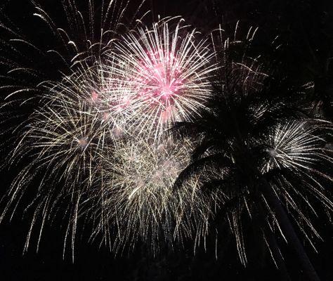Vibrant fireworks in sky