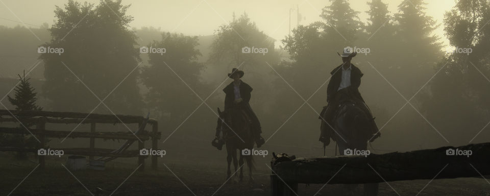 Roundup in Fog