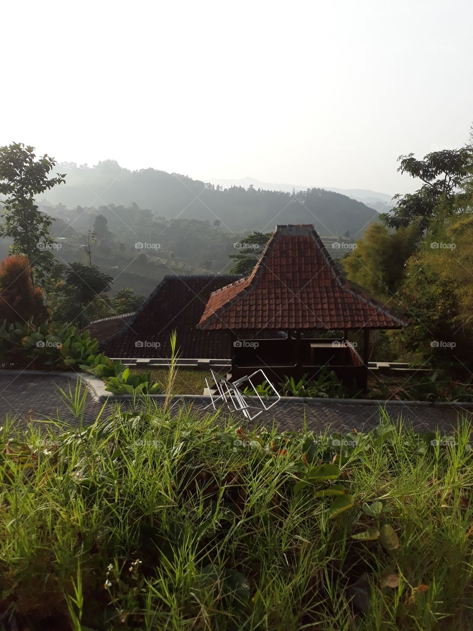 scenery around the villa V
