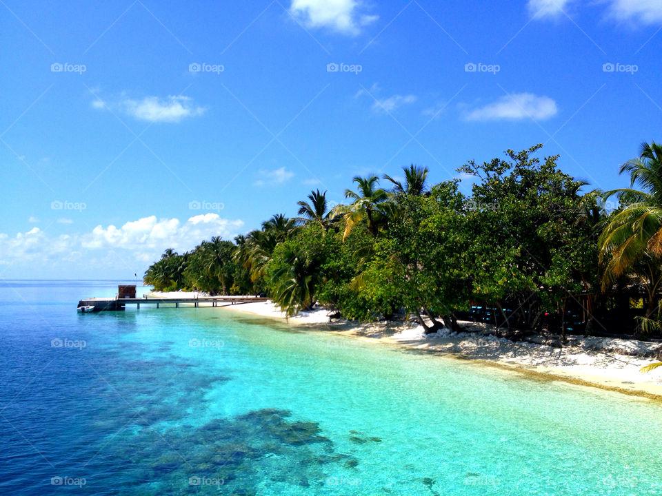 beach ocean sky blue by milliande