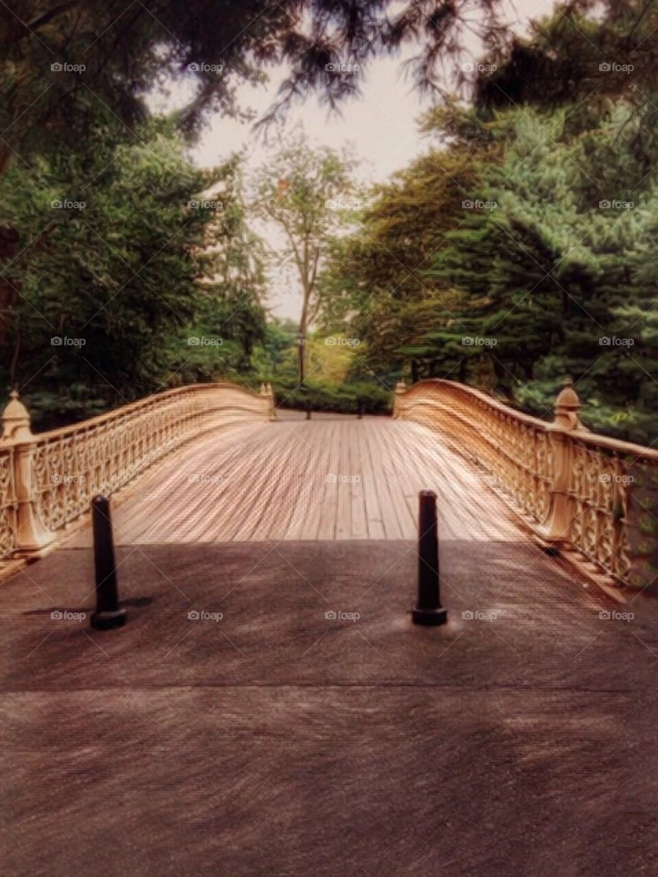 Outdoors/Nature/Landscape, Pine Bank Arch Bridge  - Central Park, Manhattan, New York City. Instagram,@PennyPeronto
