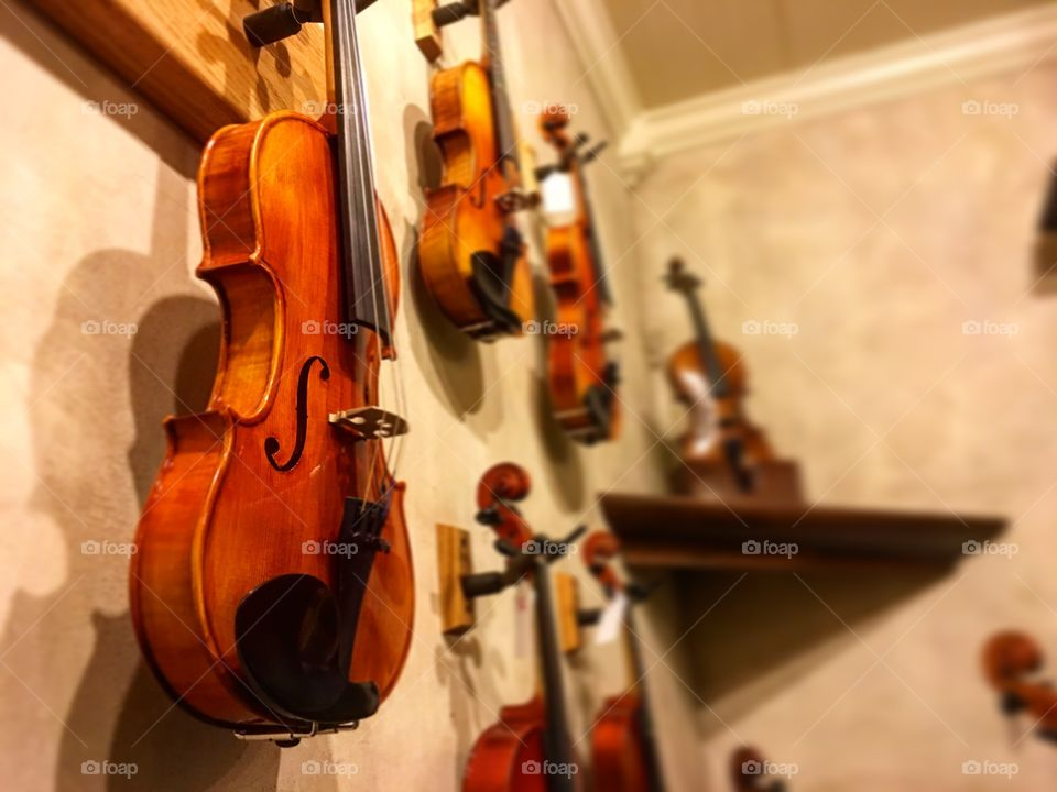 Violins hanging from a wall