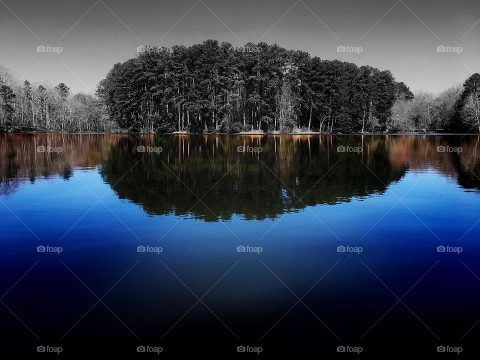 Color pop of a cluster of pine trees protrude out on a little peninsula at Lake Wheeler Park in Raleigh North Carolina, Triangle area, Wake County. Reflection is in color.