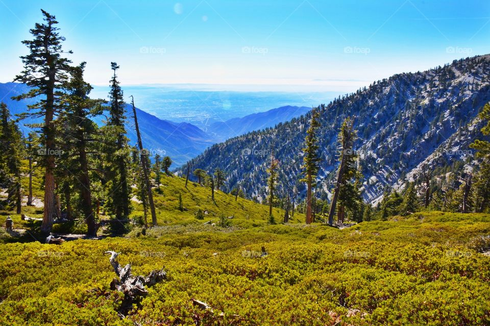 A View From Mt. Baldy