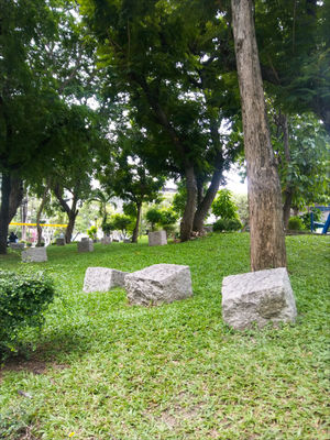 Green grass stone , little park in city