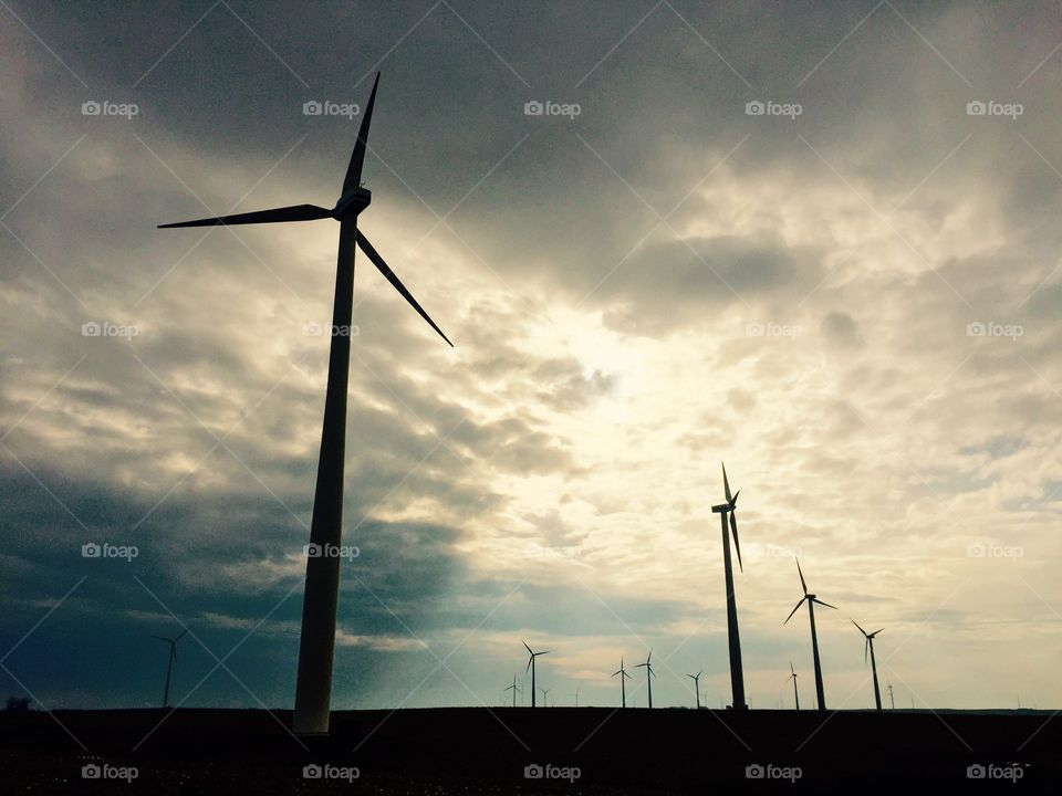 Windmills generating clean electric energy.