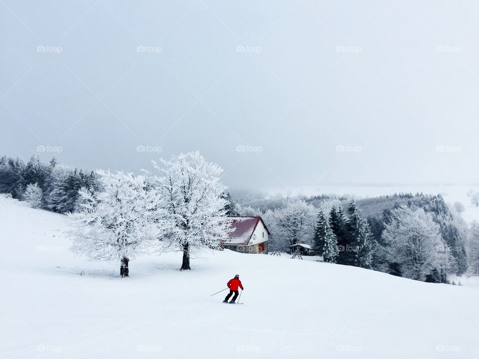 Skier in red jacket going down the slope with trees covered in snow and an only house in the background
