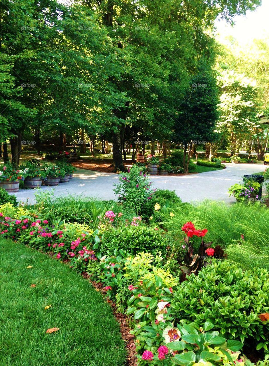 Flower garden walkway path