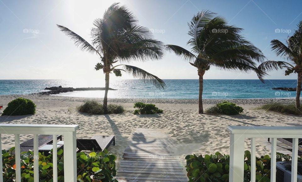 Bahamas Wind