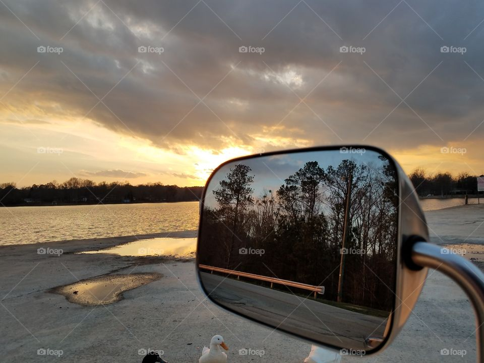 Trees reflected on side view mirror of car