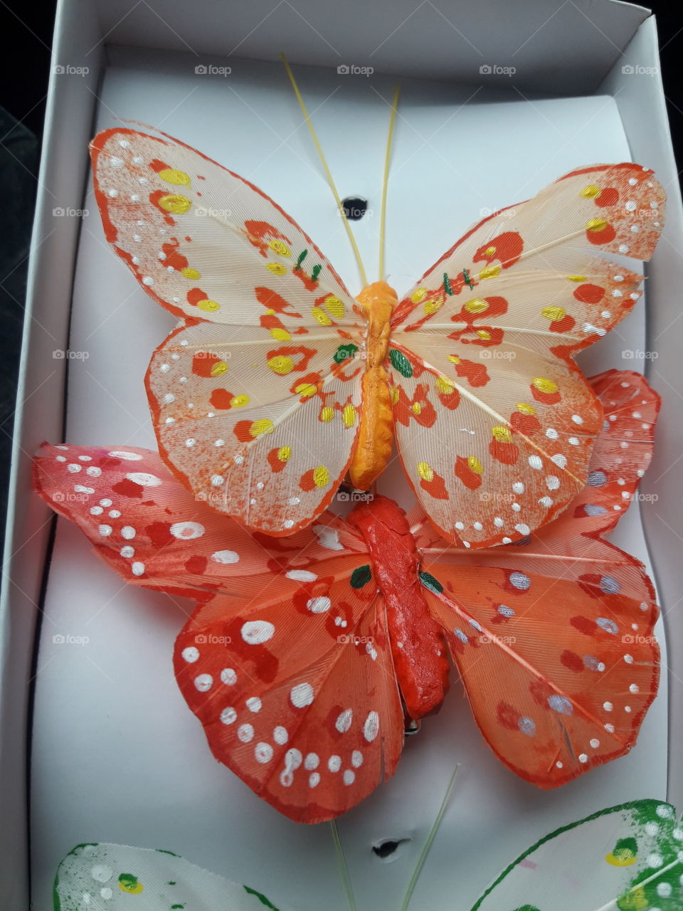 beautiful butterfly decoration inside of the house