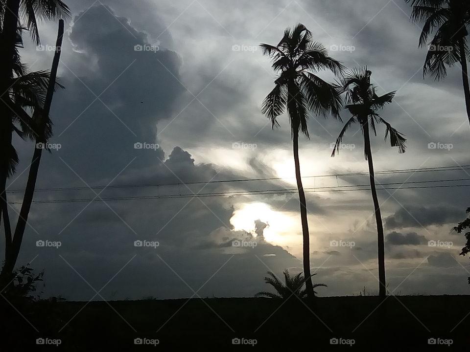 landscape 2017/10/04  032  #আমার_চোখে #আমার_গ্রাম #nature #landscape #sky #horizon #tree