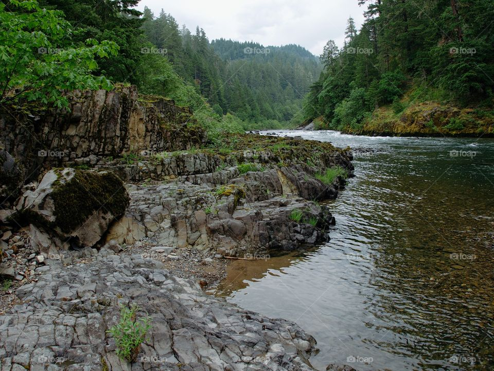 The rugged river banks made from textured hardened lava rock of the fast flowing Umpqua River in Southwestern Oregon.