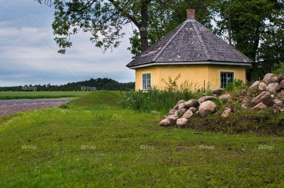 Halmstad Gula huset   image, hus, träd, gul