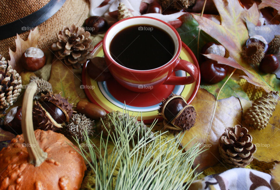 Autumn coffee at cozy home