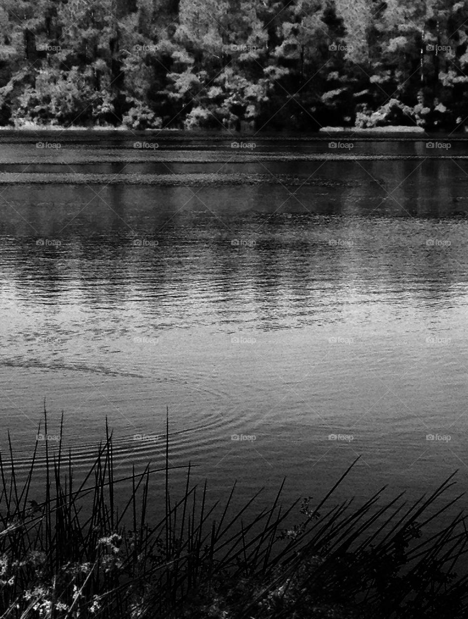 Georgia Lake. Georgia lake
