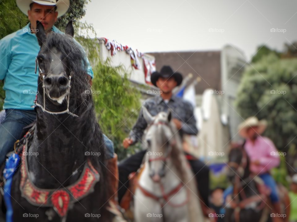 Trio Of Cowboys. Three Cowboys On Horseback