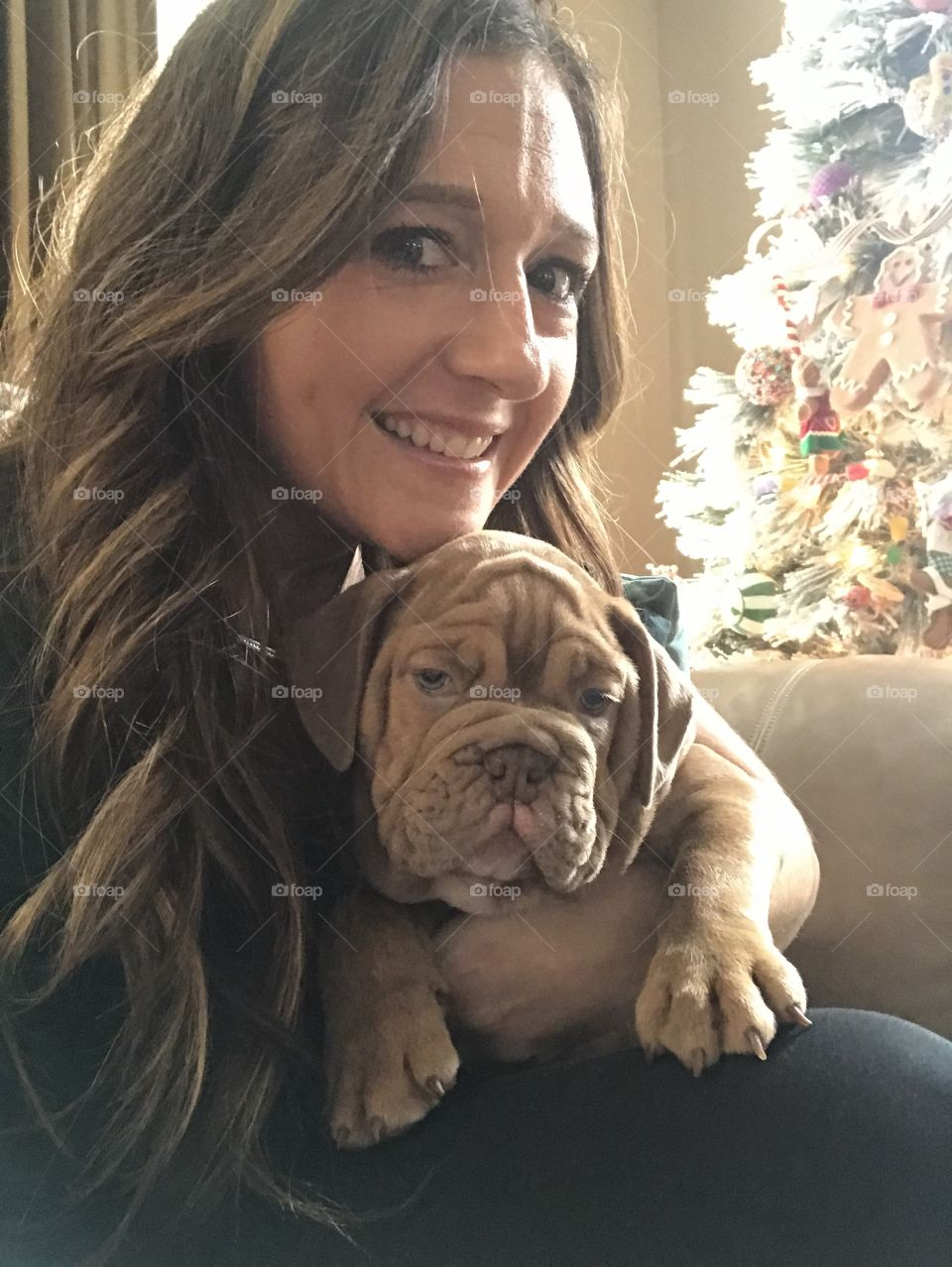 Cuddling with an adorable bulldog puppy in front of a Christmas tree.