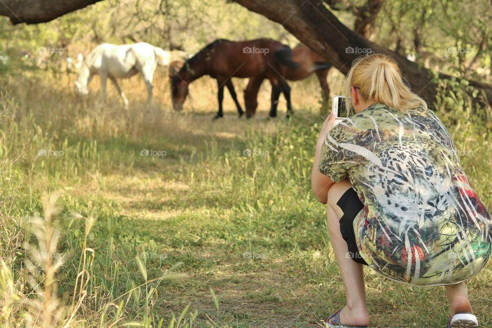 recording horses