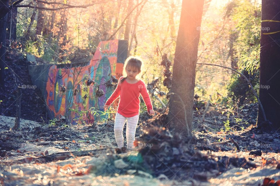 Child, People, Fall, Tree, Outdoors