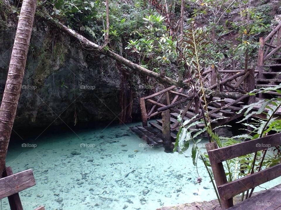 Grand cenote mexico tulum blue water turtles saimming scuba