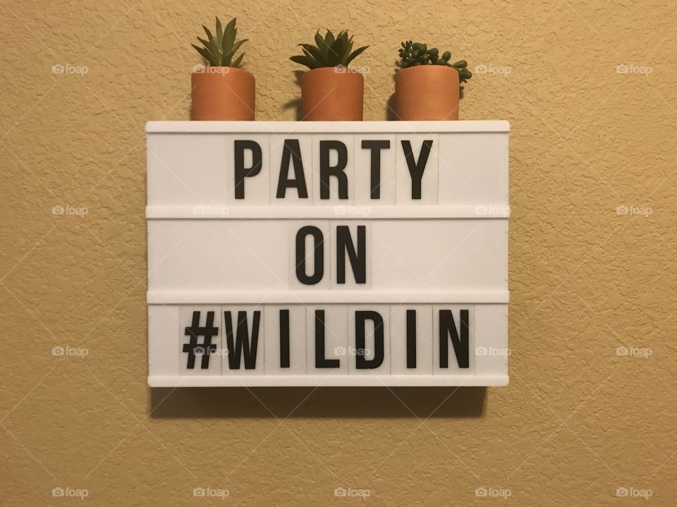 Wild child saying with succulent plants on top of the sign . Party on Wildin. #WILDIN