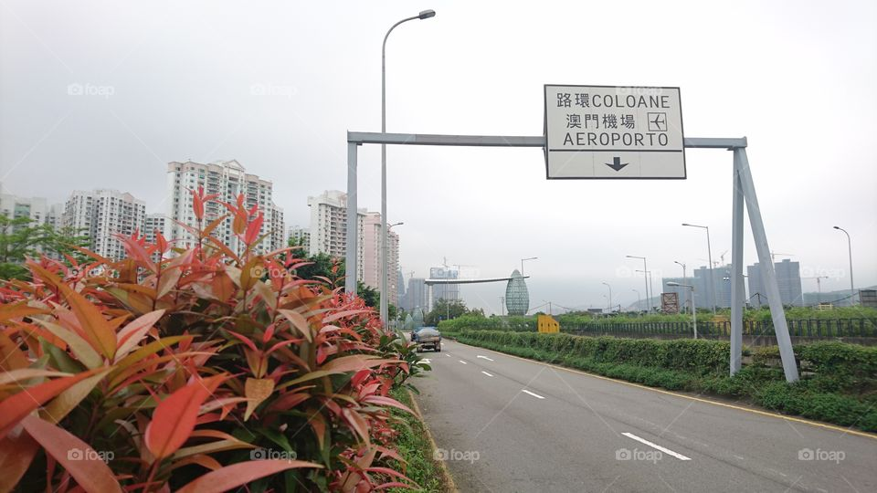 at Ave. dos Jogos da Asia Oriental.  its a highway from Macau to Cotai City a.k.a Las. Vegas of Asia.  200 meters ahead oc that road sign is. rotonda, turm left is go to Macau International Airport, and go straight, is to big and well known casinos in Macau.