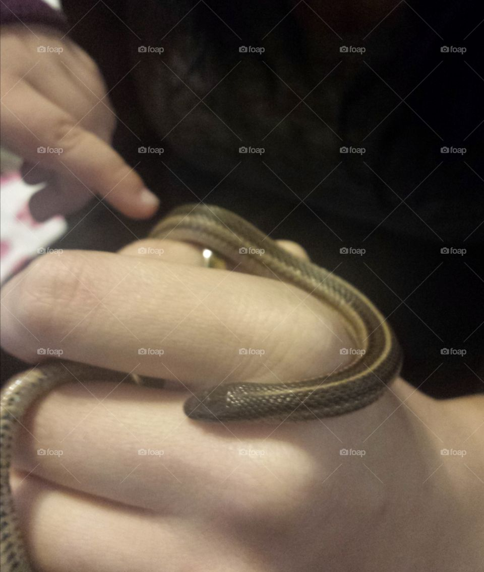 little garden snake friend