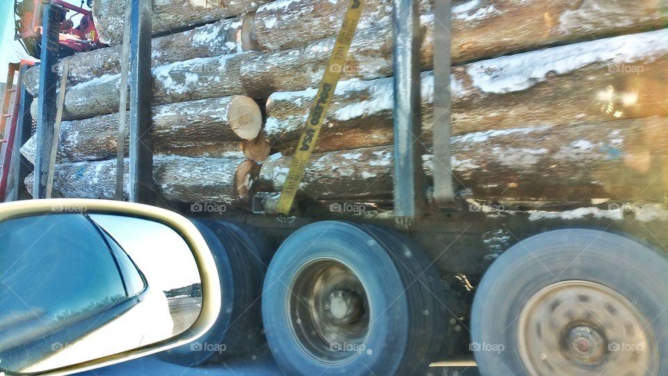 cruising pasta logging truck